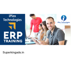 iPlex ERP Training (Paid Only)