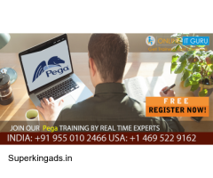 Best Pega Online Training free live demo