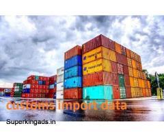 Free Sample Download of Customs import data
