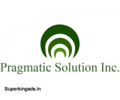 Best E-Commerce Development services - Pragmaticsolutioninc