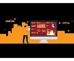 Data Visualization Services