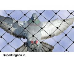 Anti bird/Pigeon Net dealers in Hyderabad