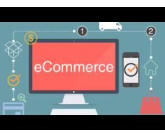 Best Ecommerce Development Agency: 5 Tips on Choosing one